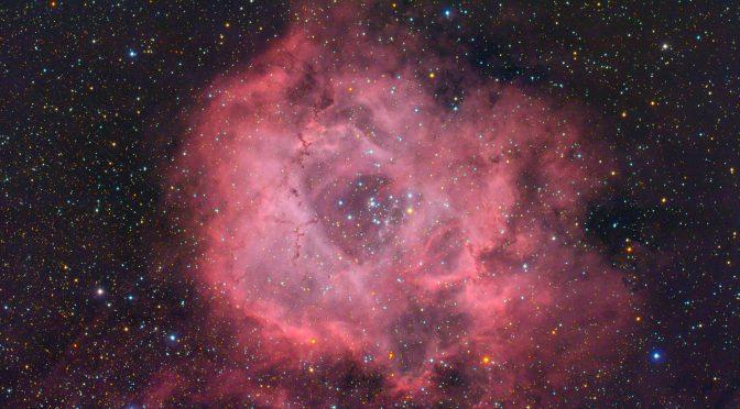 NGC 2244: Rosette nebula